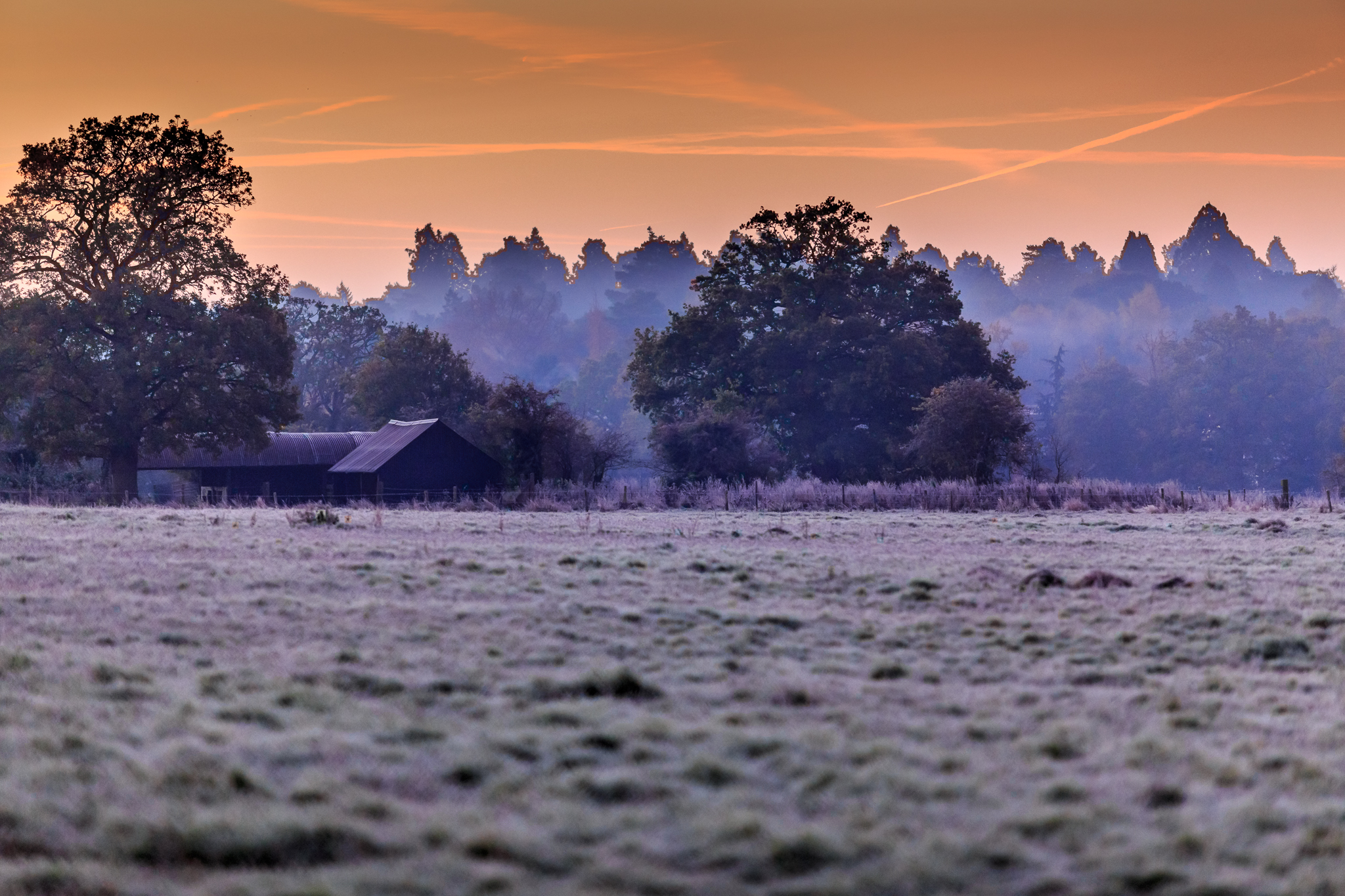 Sunrise, Knaphill